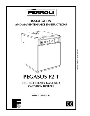 Ferroli Pegasus F2 T
