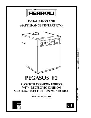 Ferroli Pegasus F2