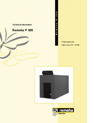 Remeha P 300